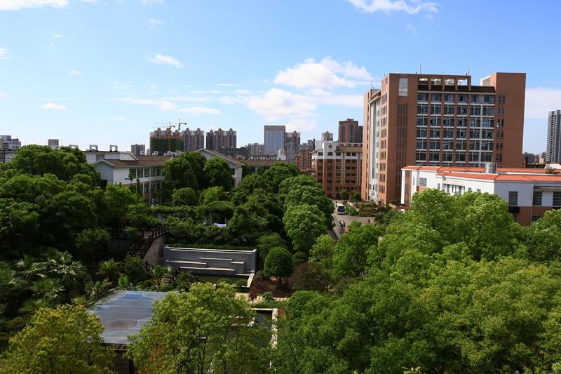 园林式医院